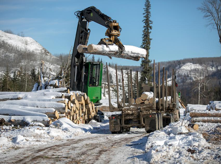 A log loader is placing processed logs onto a truck for transport to a mill in Fort St. John. (Spring 2019)